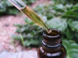herbs-tinctures