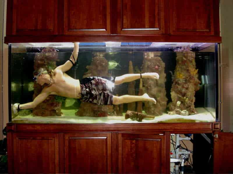 Fish-Tank-Decoration-Pictures-with-the-cleaning